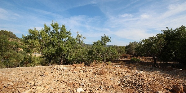 0 bedroom Finca for sale in Alaro, Mallorca