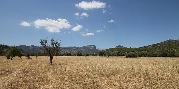 0 bedroom Land for sale in Alaro, Mallorca