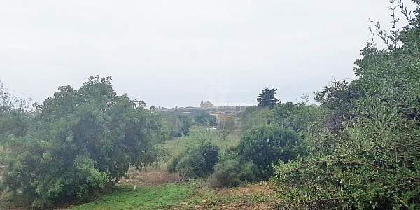 0 bedroom Land for sale in Alqueria Blanca, Mallorca