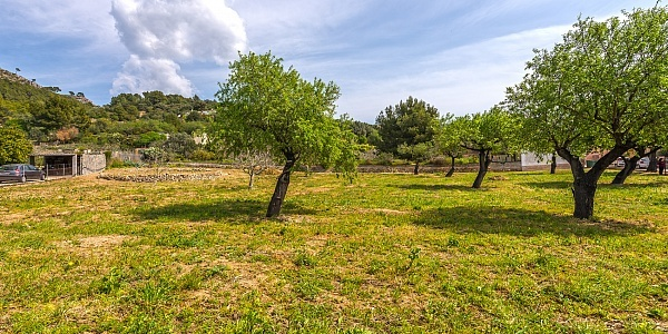 0 bedroom Land for sale in Andratx, Mallorca