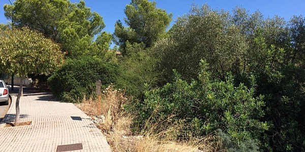 0 bedroom Land for sale in Bonanova, Mallorca