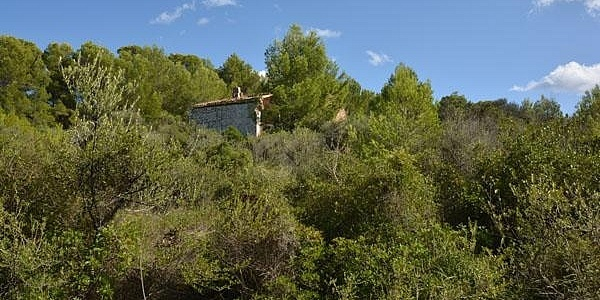 0 bedroom Land for sale in Cala Ratjada, Mallorca