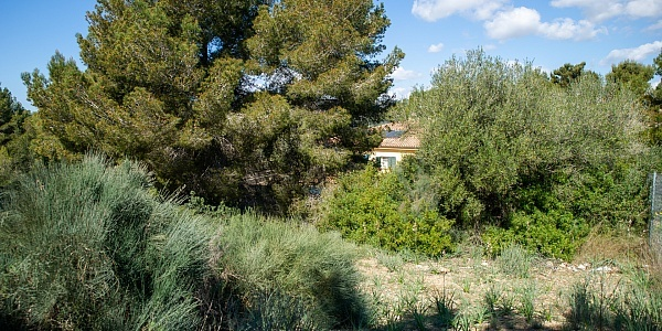 0 bedroom Land for sale in Cala Vinyas, Mallorca