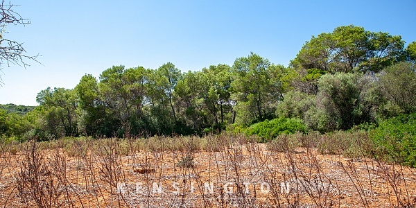 0 bedroom Land for sale in Cala dor, Mallorca