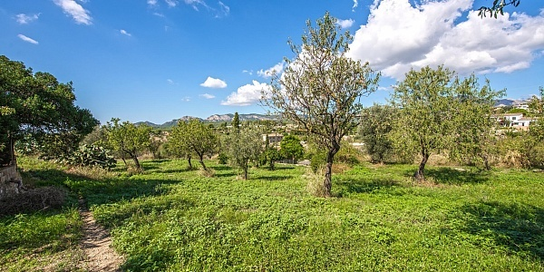 0 bedroom Land for sale in Calvia, Mallorca