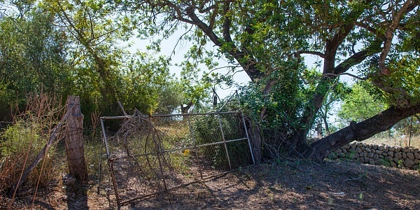 0 bedroom Land for sale in Campanet, Mallorca