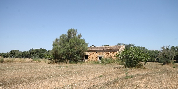 0 bedroom Land for sale in Costitx, Mallorca