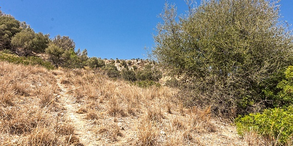 0 bedroom Land for sale in Genova, Mallorca