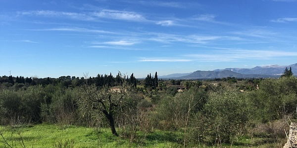 0 bedroom Land for sale in Muro, Mallorca