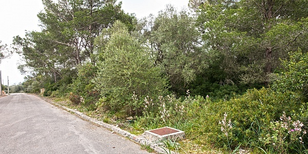 0 bedroom Land for sale in Puntiró, Mallorca