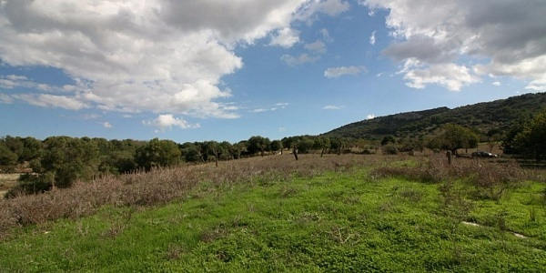 0 bedroom Land for sale in San Lorenzo, Mallorca