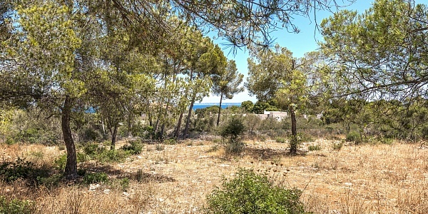 0 bedroom Land for sale in Sol de Mallorca, Mallorca