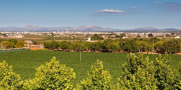 0 bedroom Townhouse for sale in Sa Pobla, Mallorca