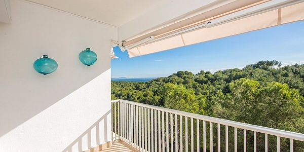 2 bedroom Apartment for sale in Sol de Mallorca, Mallorca