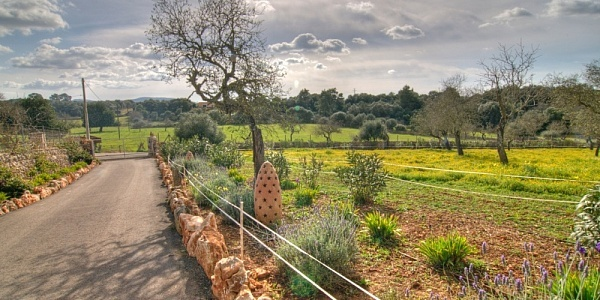 3 bedroom Finca for sale in Felanitx, Mallorca