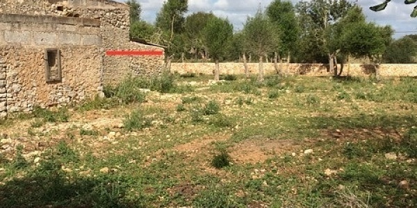 6 bedroom Land for sale in Manacor, Mallorca